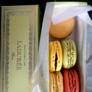 """What makes them so special?"" you ask but shortly find out with the first bite. Ladurée macarons."