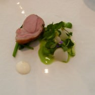 Milk Fed Lamb, Broad Beans, Small White Turnip, Yuzu Yogurt, Spinach. Beautiful cut of lamb.